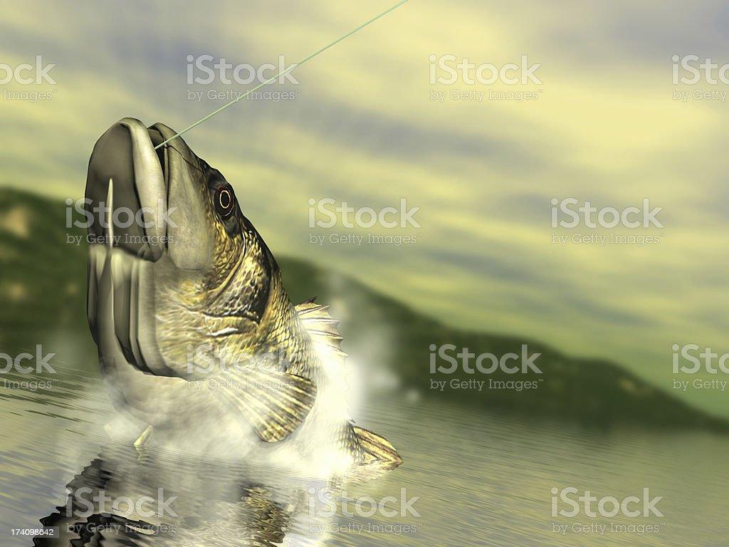 Bass Fishing royalty-free stock photo