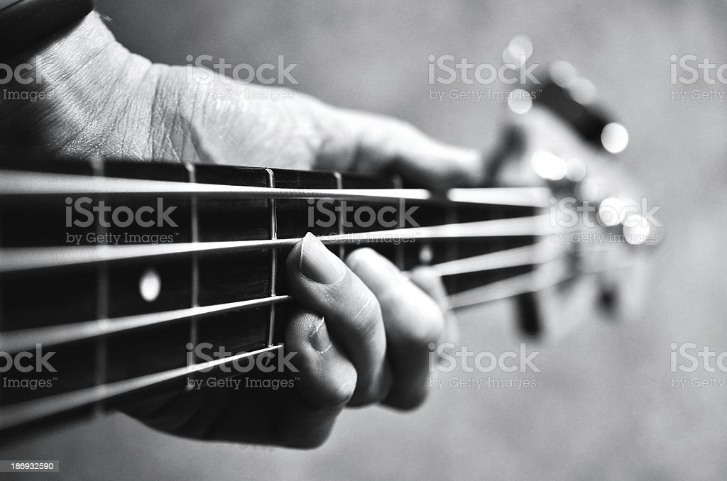 Bass in black and white stock photo