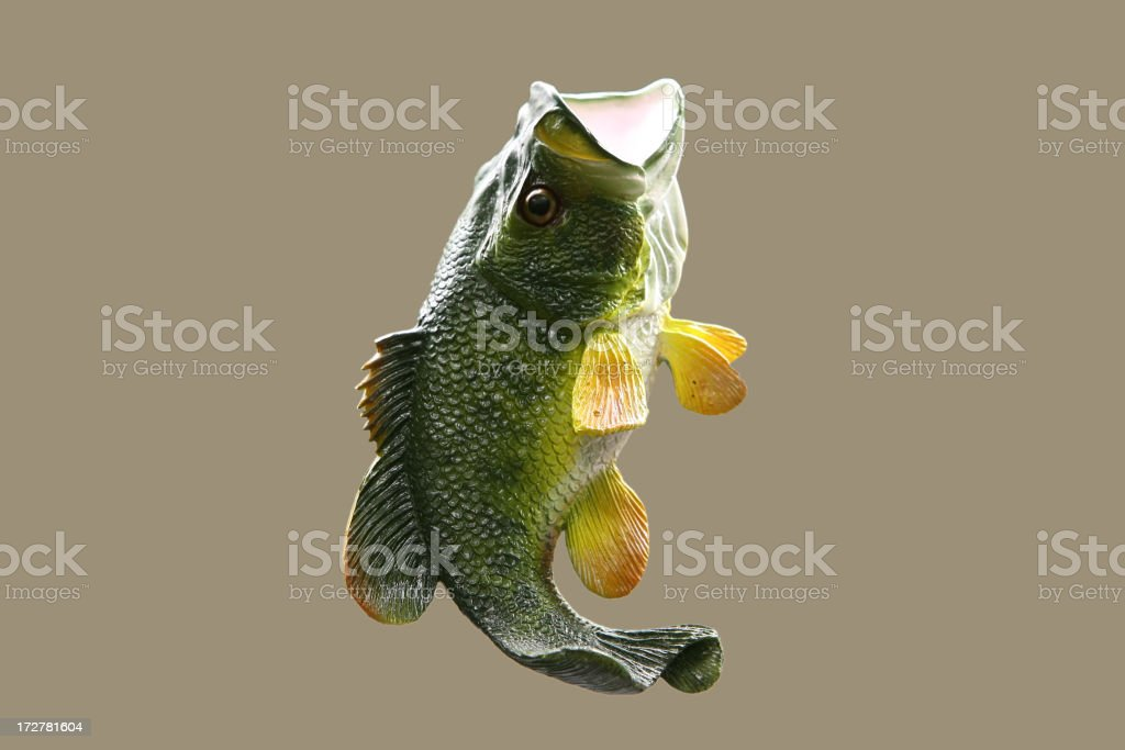 Bass royalty-free stock photo