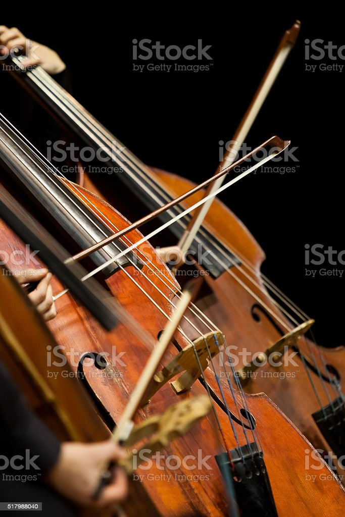 Basses in the symphony orchestra closeup stock photo