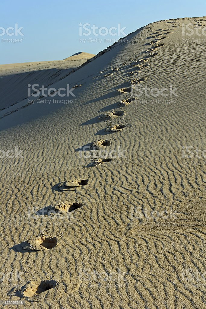 Bassin d'Arcachon with dune of Pyla: Footprints in the sand stock photo