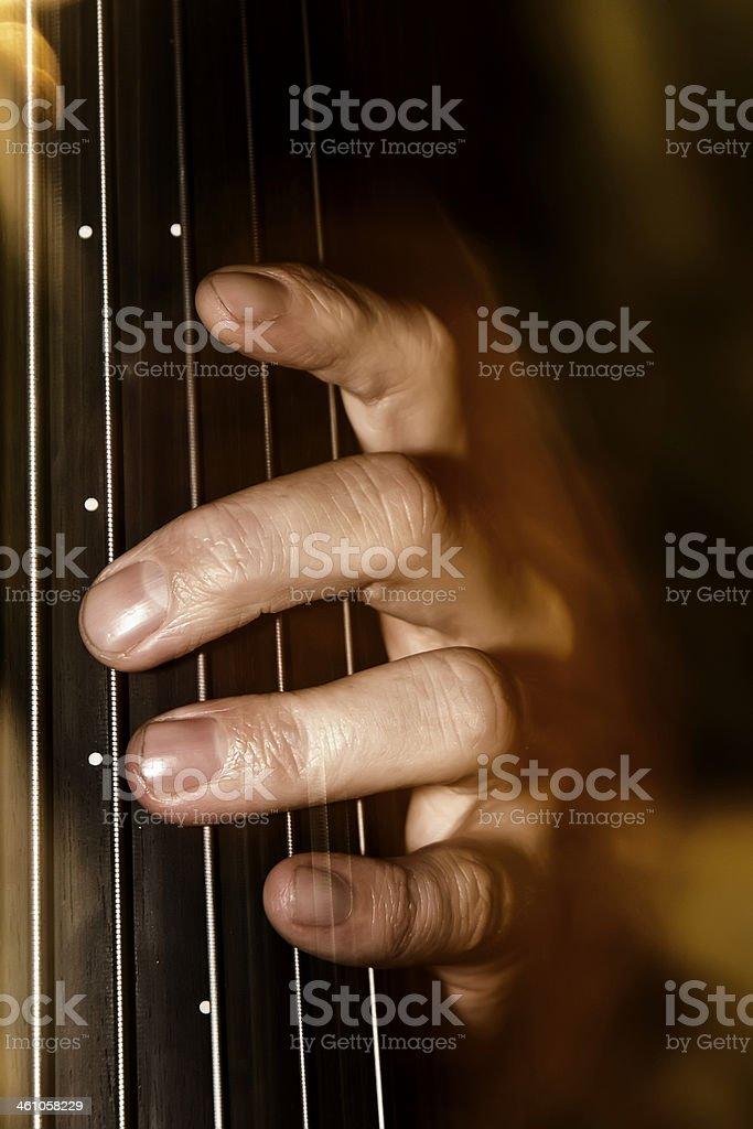 Bassista royalty-free stock photo