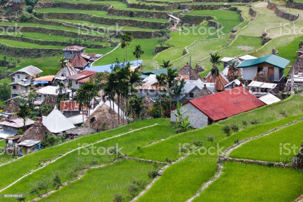Batad rice field terraces in Ifugao province, Banaue, Philippines stock photo