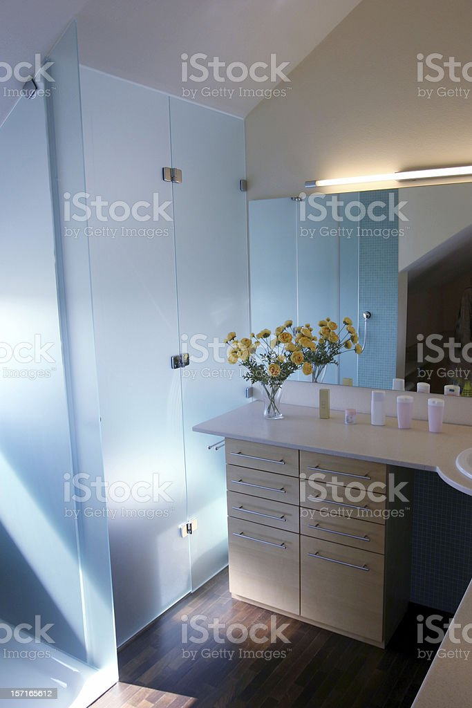 Bathroom & flowers royalty-free stock photo