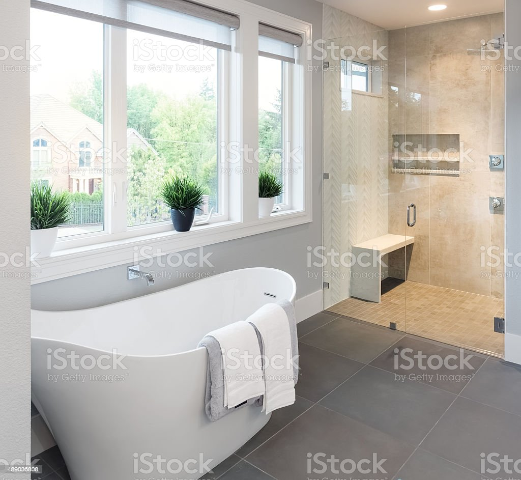 Bathroom in Luxury Home: Bathtub and Shower stock photo