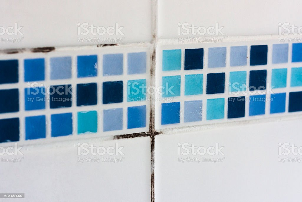Bathroom mould and dirt on tile grouting stock photo