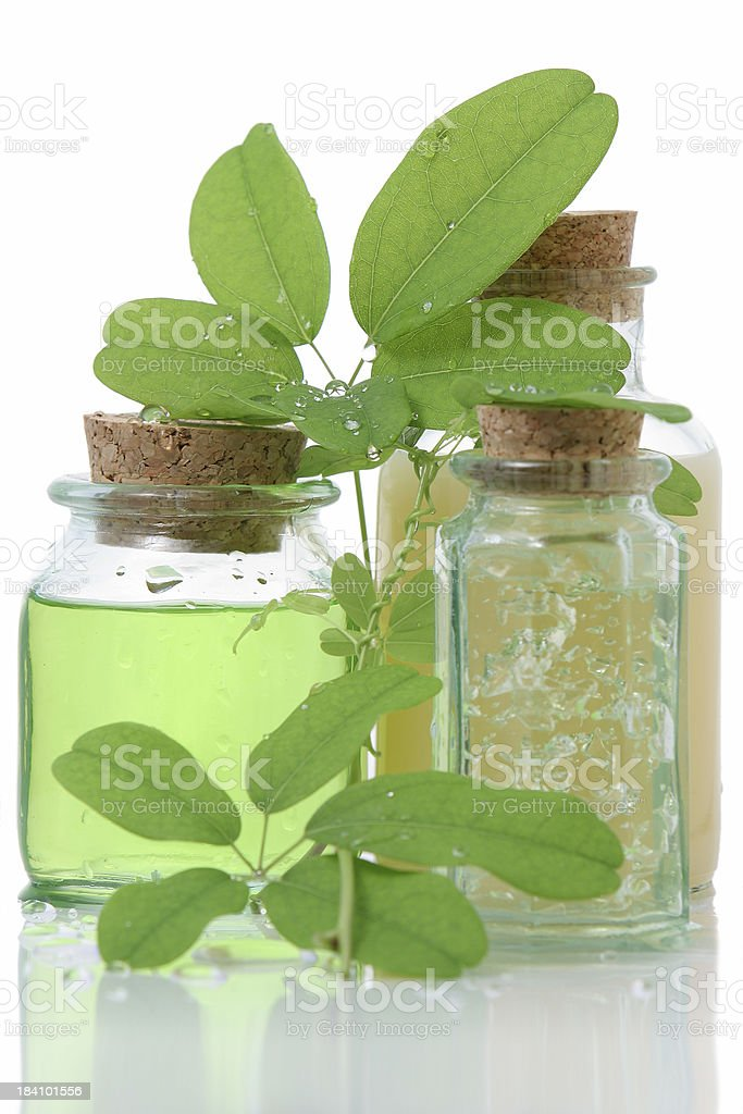 Bathroom products composition with green leaves royalty-free stock photo