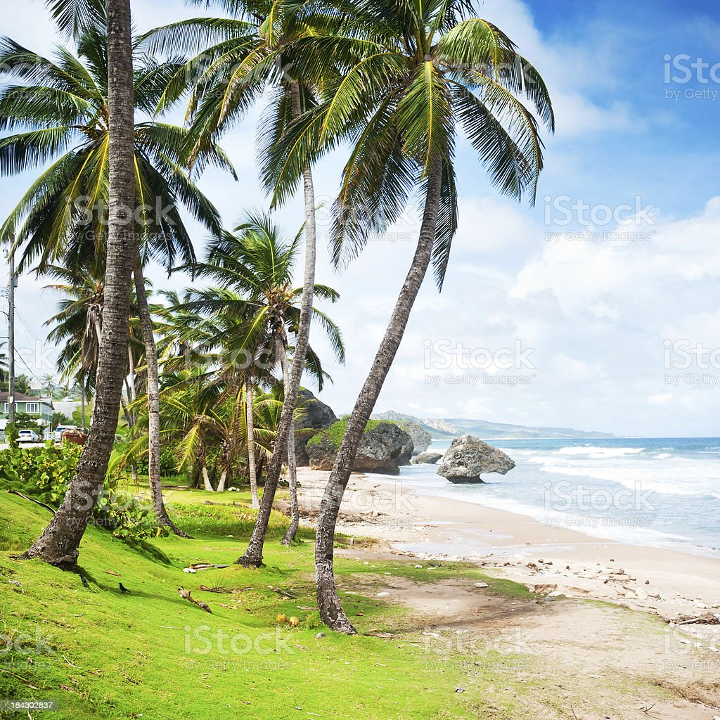 Bathsheba, Barbados royalty-free stock photo