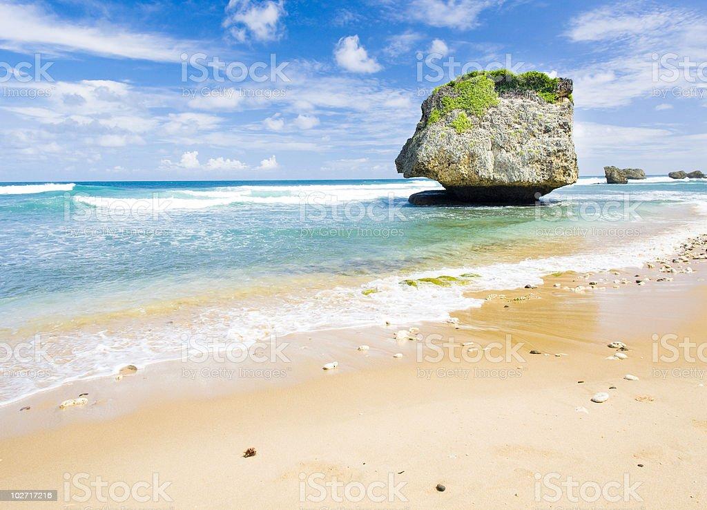 Bathsheba beach in Barbados by the clear ocean royalty-free stock photo