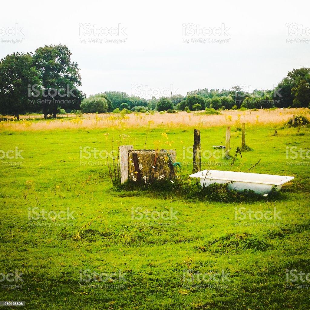 Bathtube in the green pasture stock photo