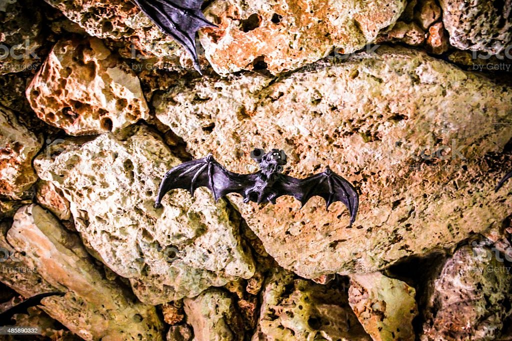 Bats in the cave stock photo