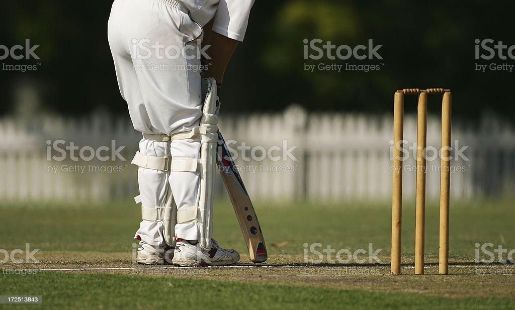Batsman at the Crease stock photo
