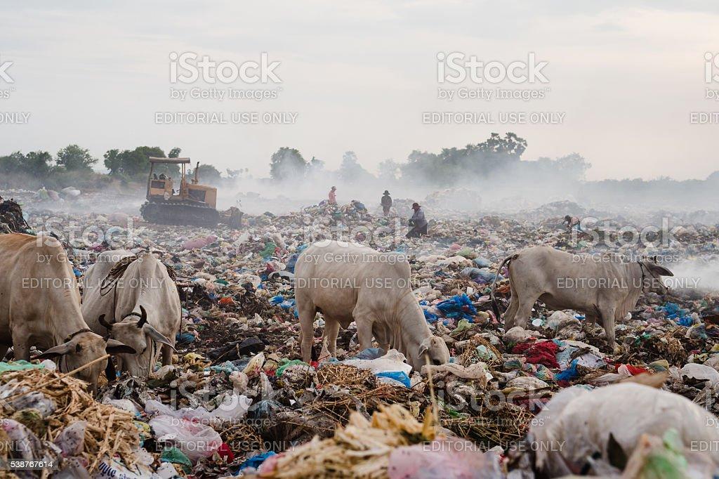 Battambang Rubbish Dump stock photo