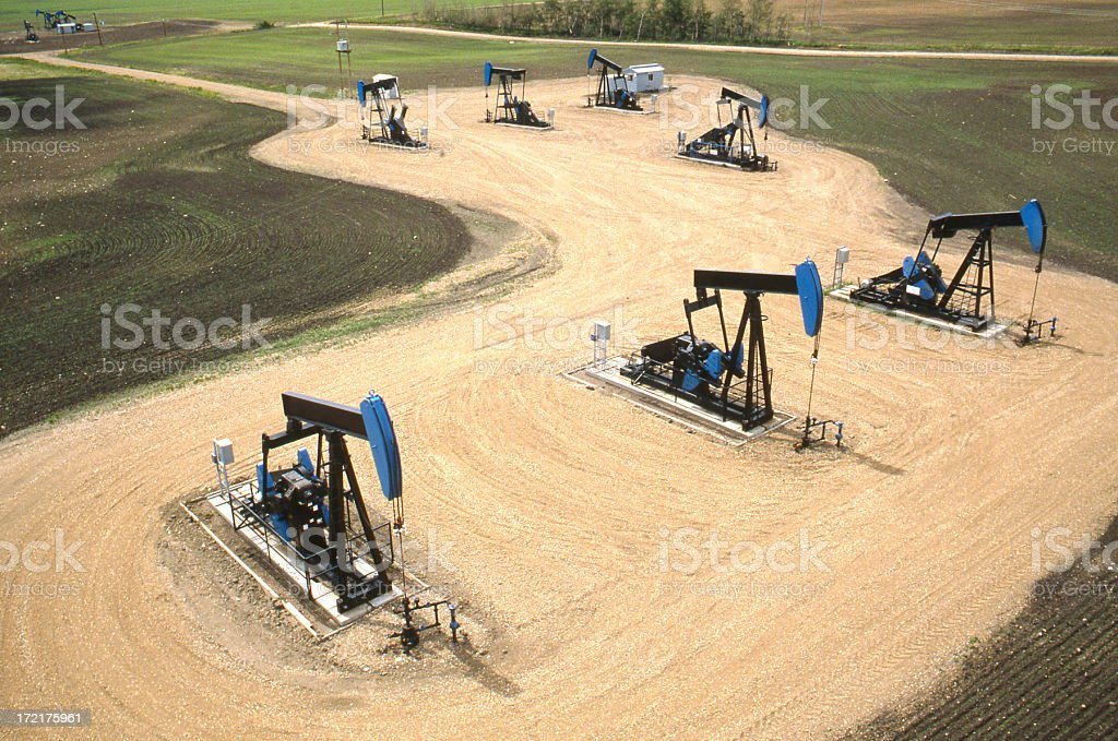 Battery of Pumpjacks royalty-free stock photo