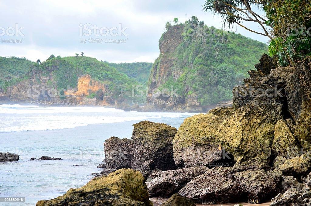 Batu Bekung Coral stock photo