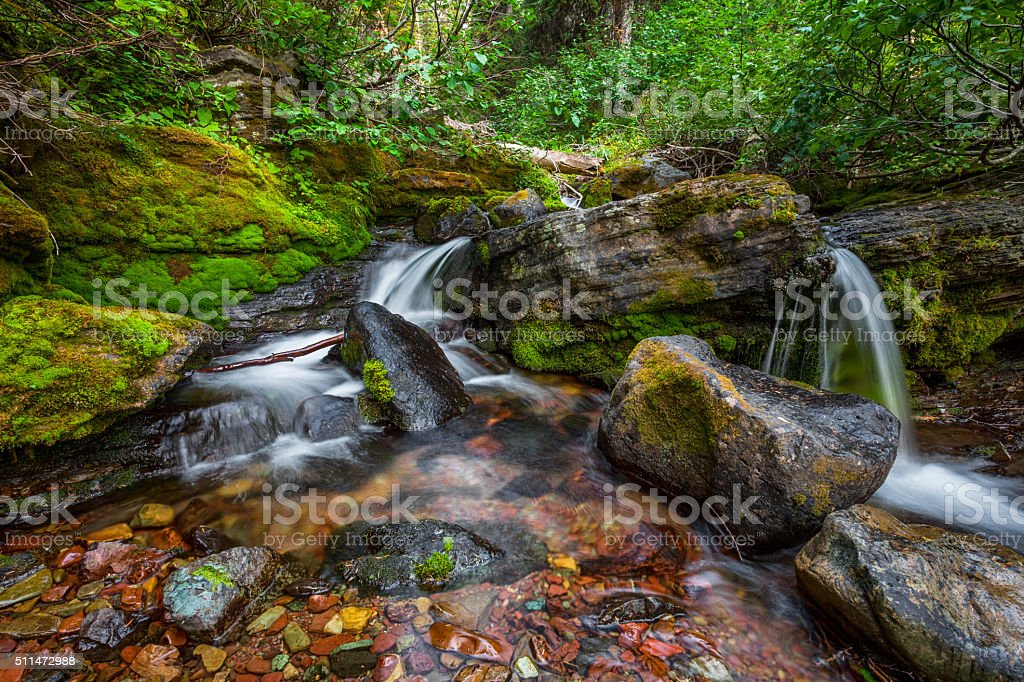 Bauerman Creek, Waterton National Park stock photo