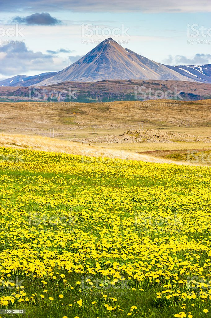 baula mountain, iceland stock photo