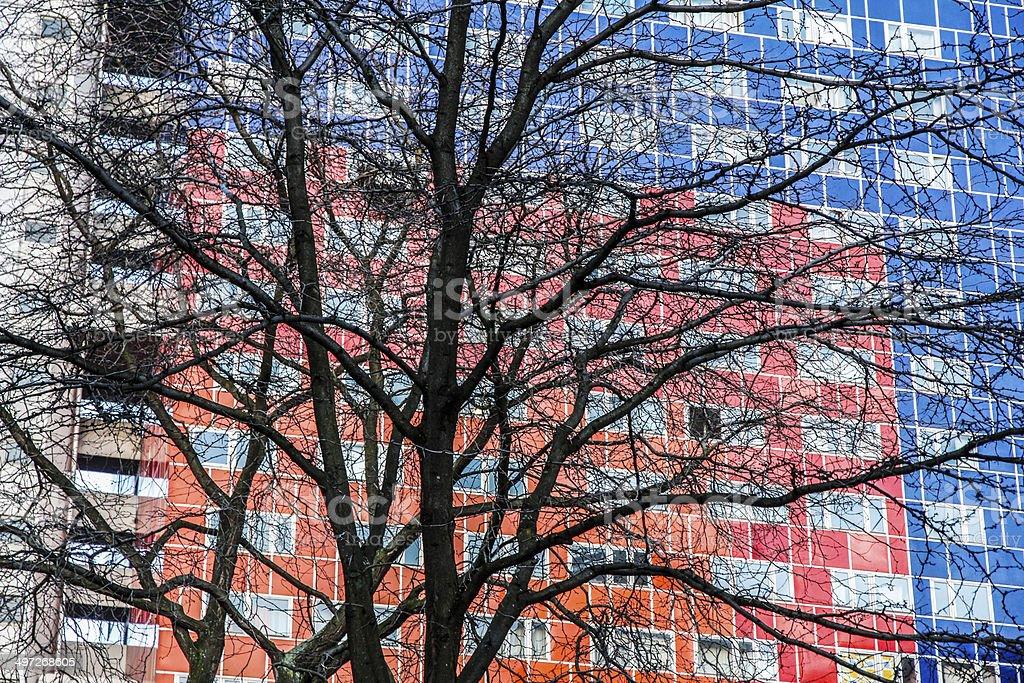 Baum vor Hochhaus rot blau stock photo