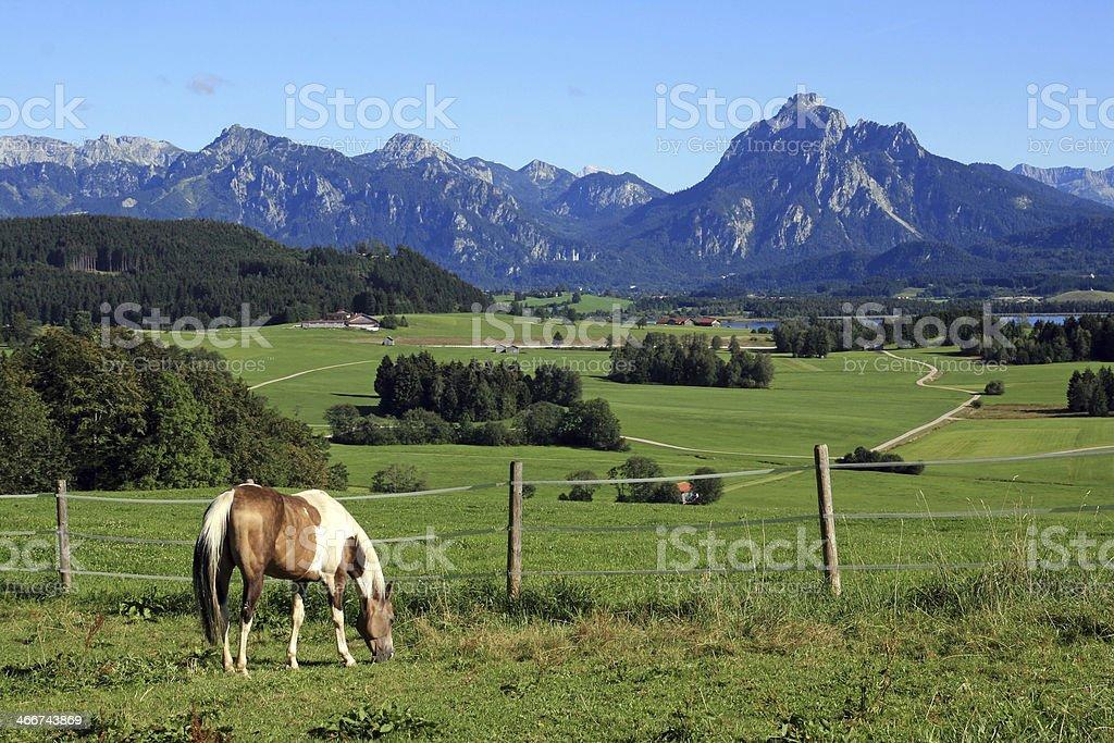 Bavaria stock photo