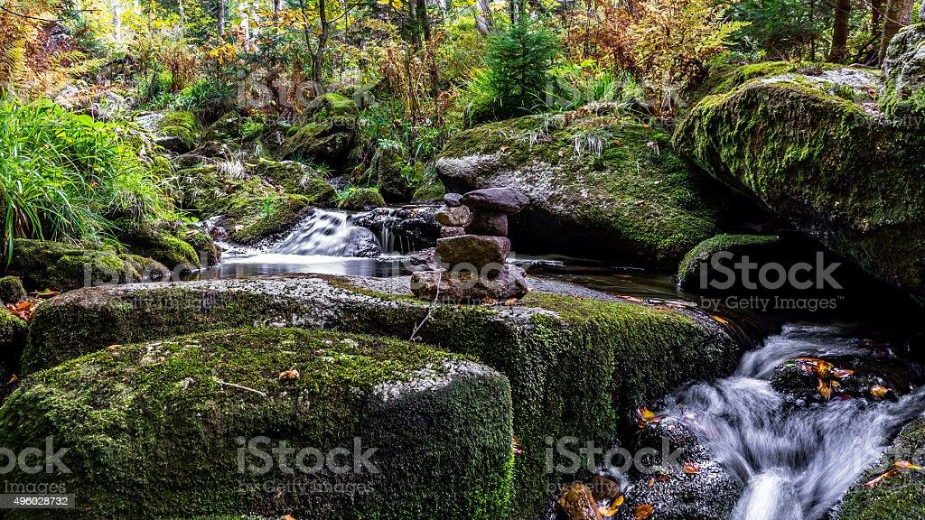 Bavarian Forest, Bavaria, Germany stock photo