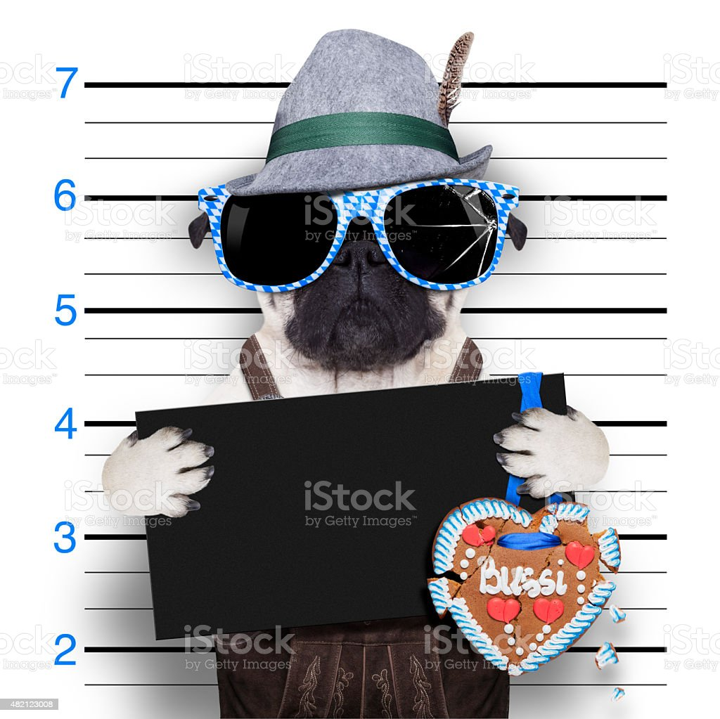 bavarian oktoberfest mugshot stock photo