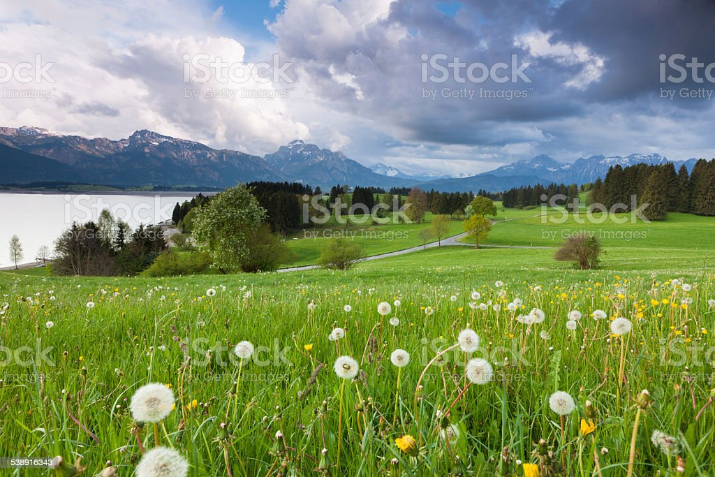 bavarian spring meadow with thunder storm clouds stock photo