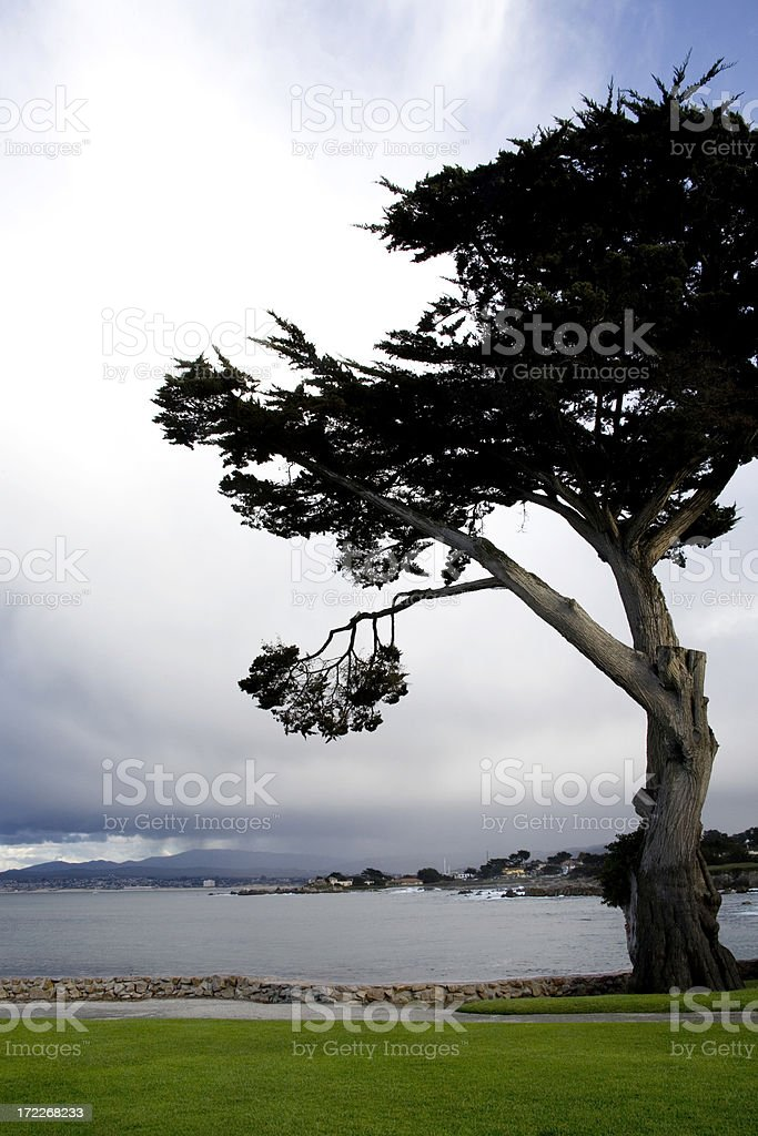 Bay At Monterey royalty-free stock photo