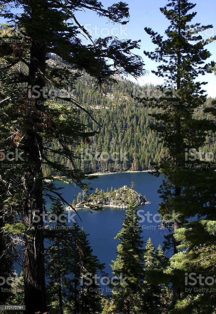 Bay Island with Evergreens royalty-free stock photo