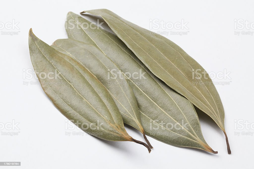 Bay leaves in pale royalty-free stock photo