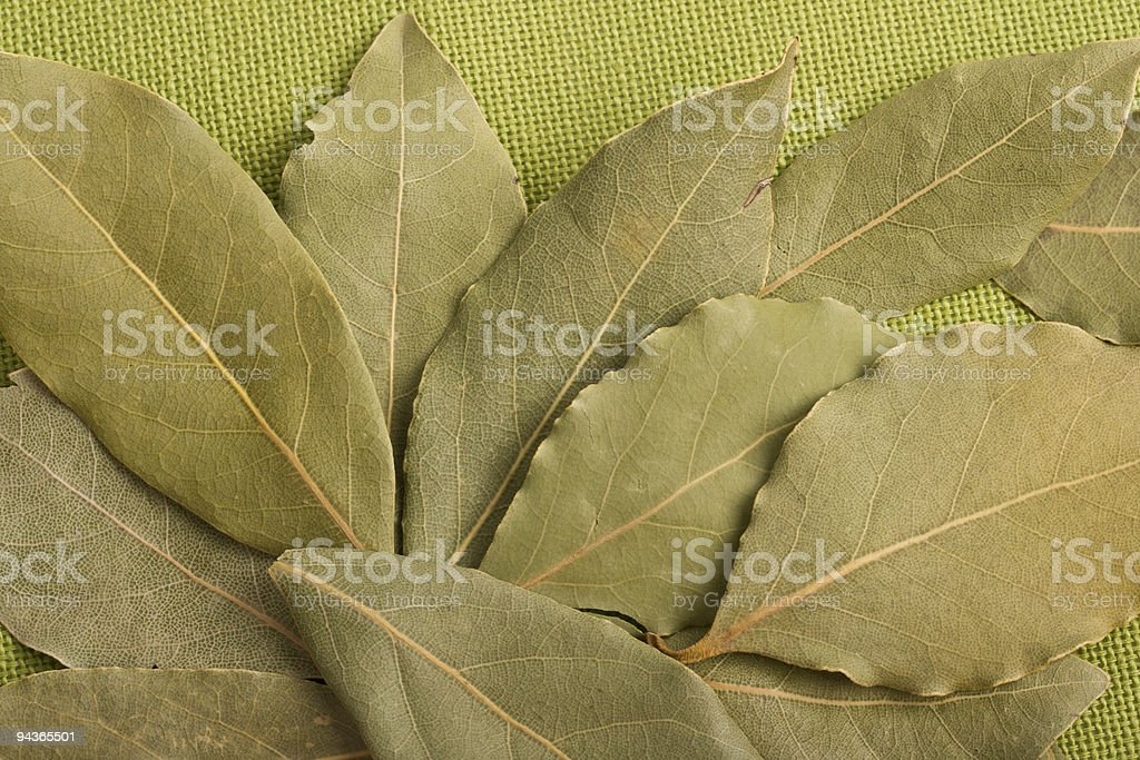 Bay leaves on green royalty-free stock photo