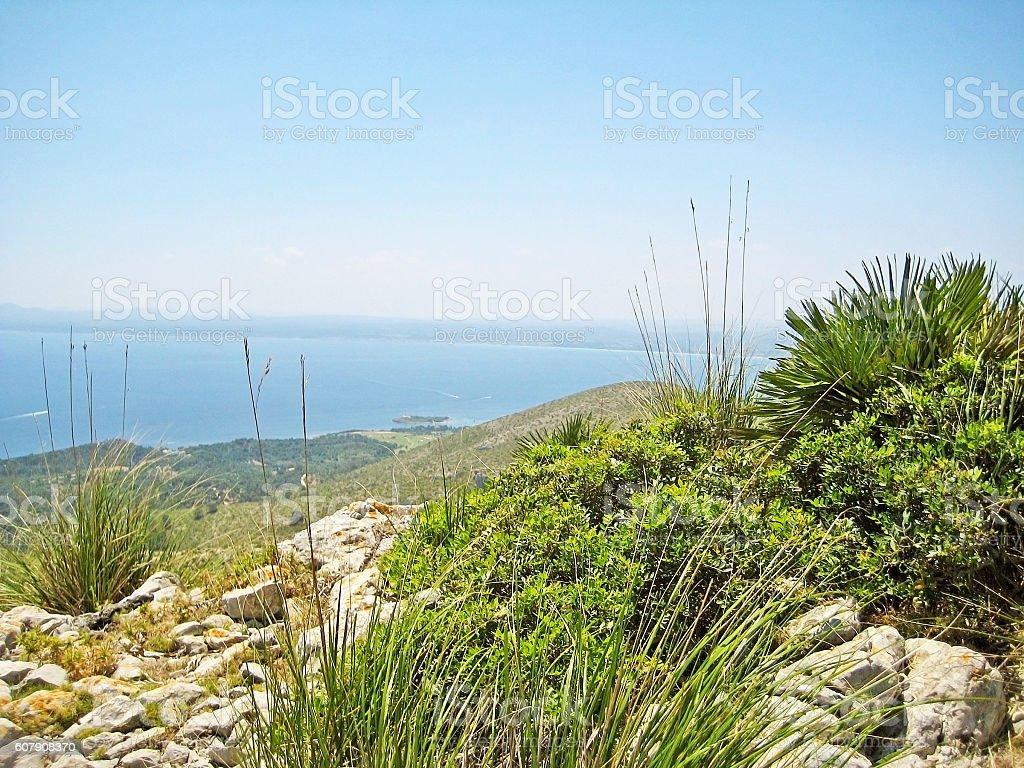 Bay of Alcudia, Majorca, Spain stock photo