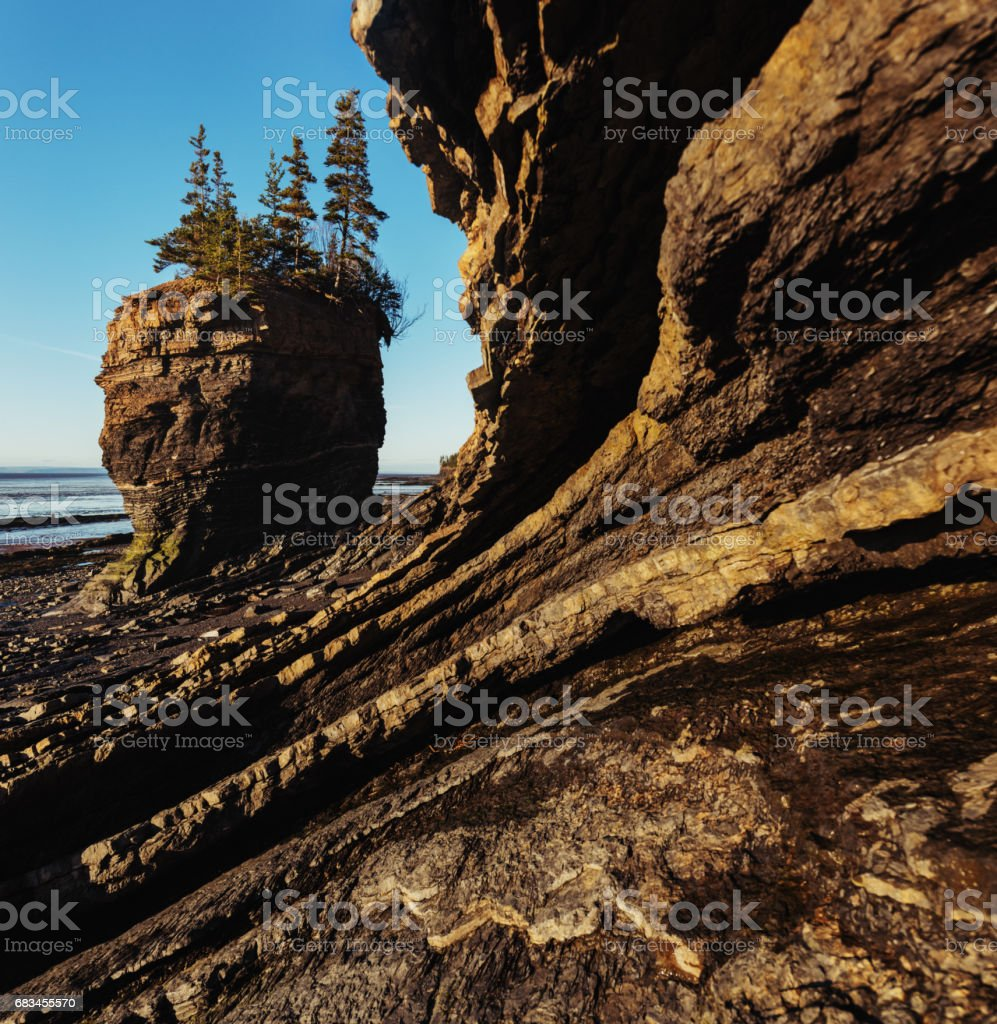 Bay of Fundy Flower Pot stock photo