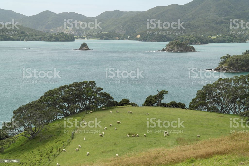 Bay of Islands - New Zealand stock photo