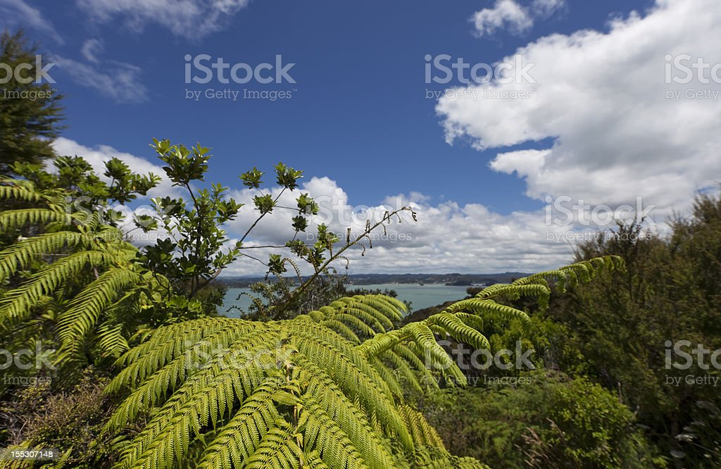 Bay of Islands with blue Sky and white Clouds royalty-free stock photo