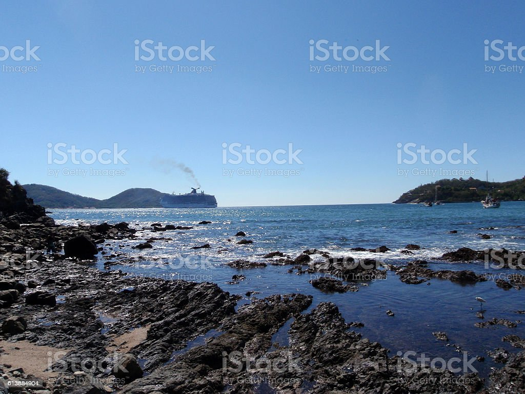 Bay of Zihuatanejo with bird playing in shore stock photo