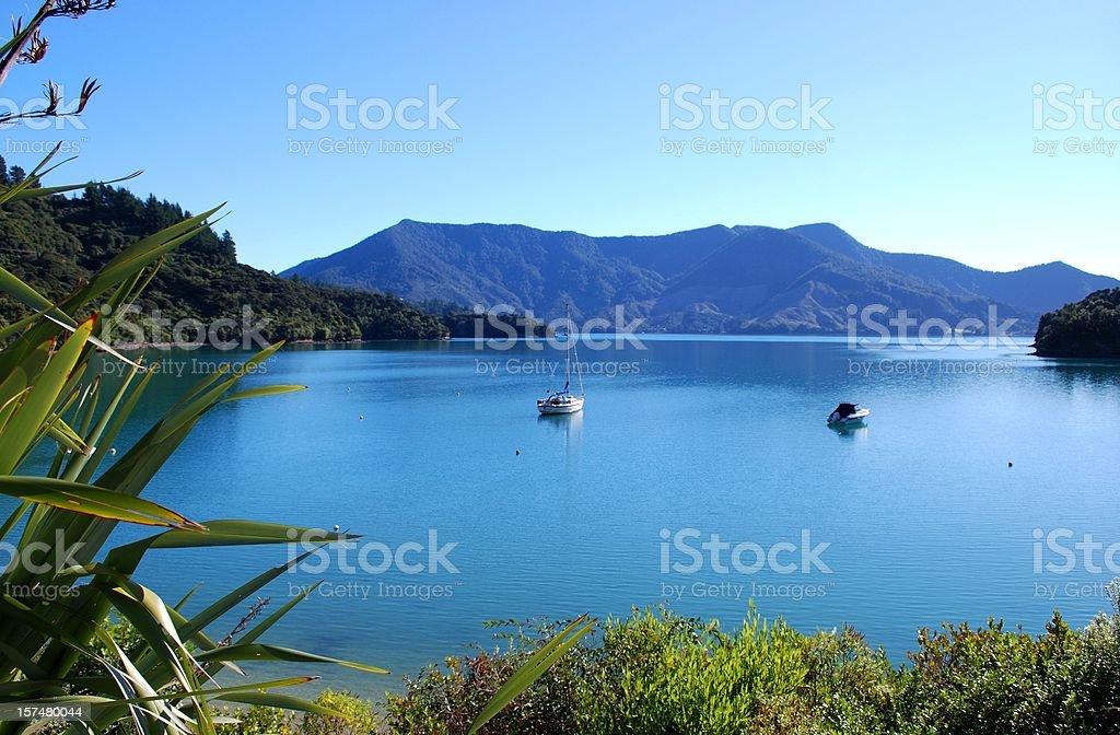 Bay on the Kenepuru Sound, Marlborough stock photo
