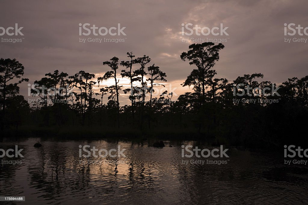 Bayou at Sunset royalty-free stock photo