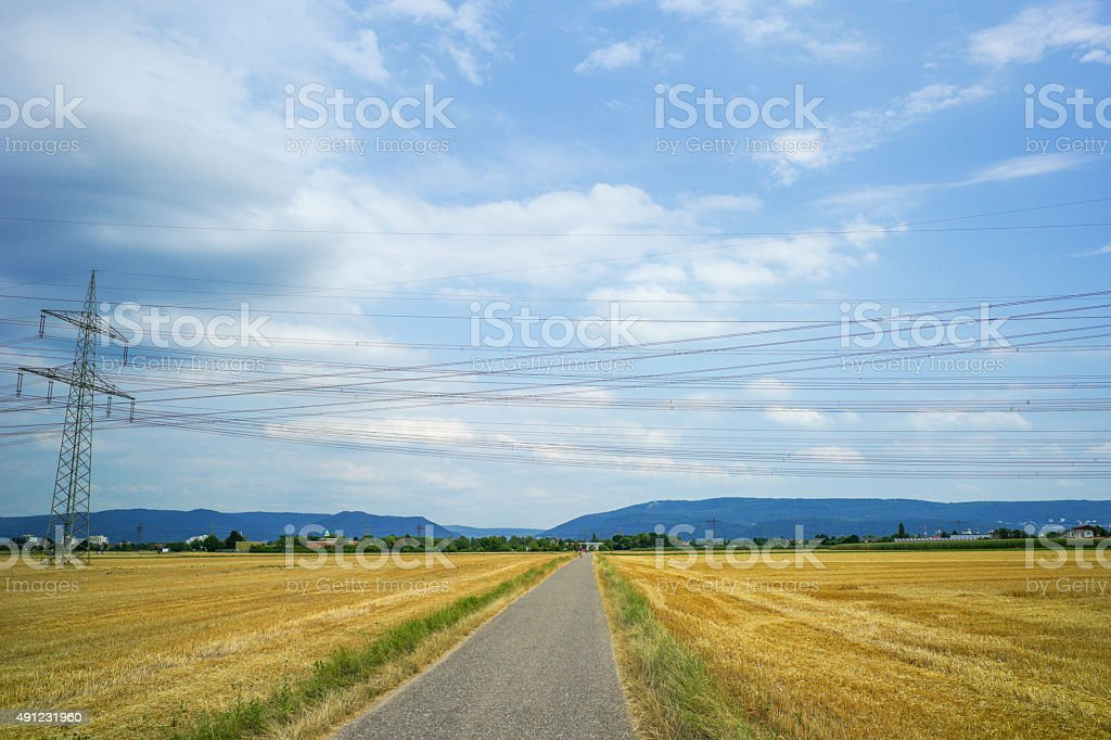 Bcycle path middle of wheat field near speyer germany stock photo