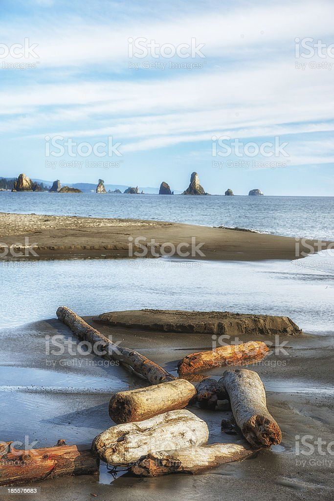 beach 3 at olympic national park, washington state royalty-free stock photo
