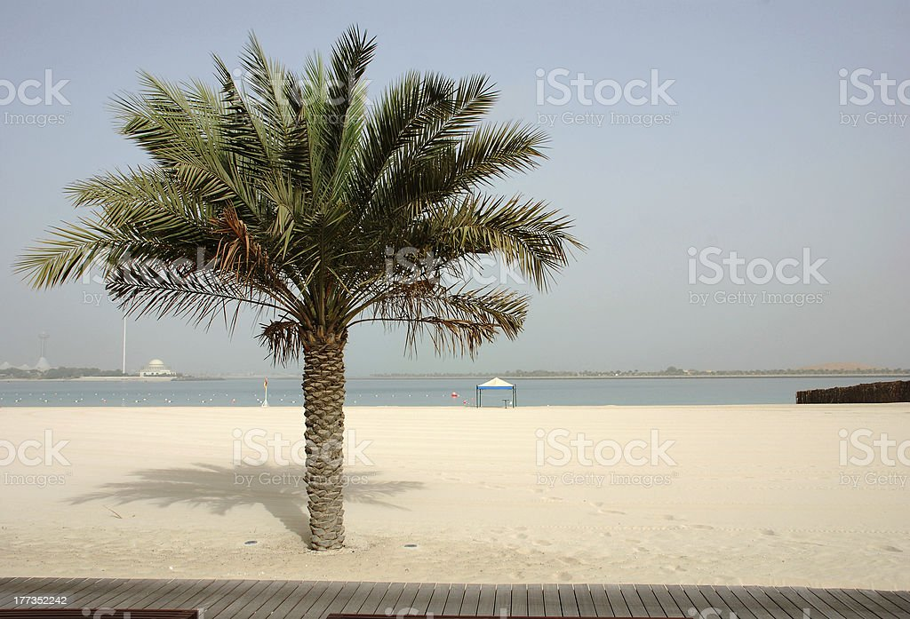 Beach Abu Dhabi royalty-free stock photo