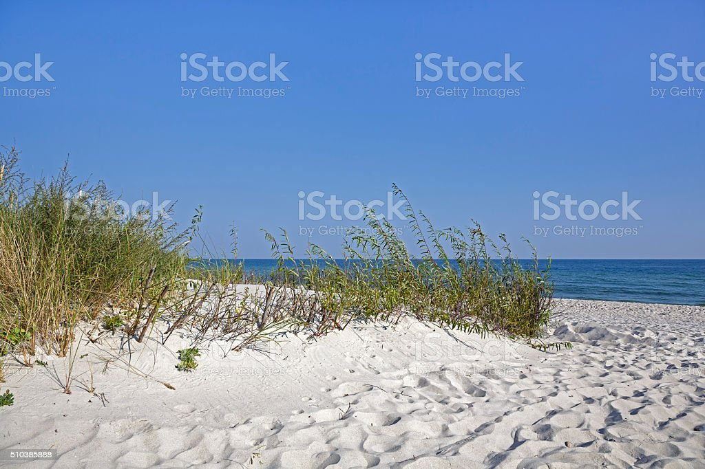 Beach access between the dunes stock photo