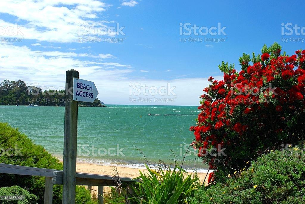 Beach Access on Kaiteriteri, Summer stock photo
