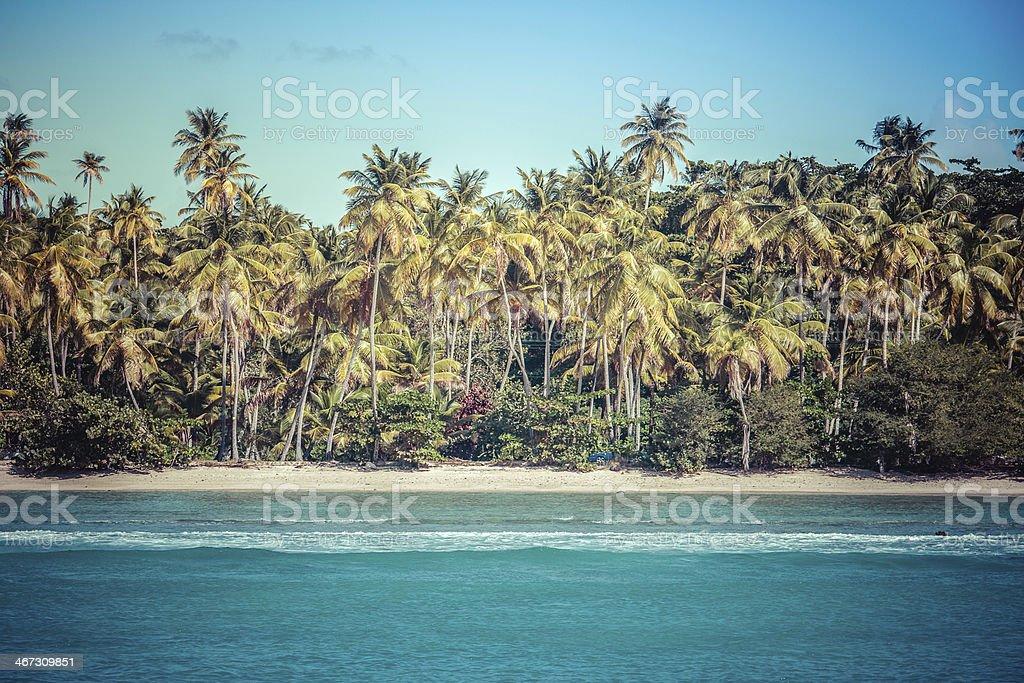 Beach Along Store Bay Tobago Color stock photo