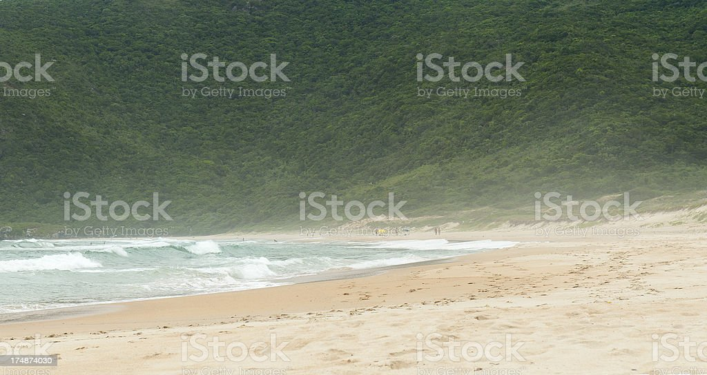 Beach along the endless coast of Brazil. stock photo