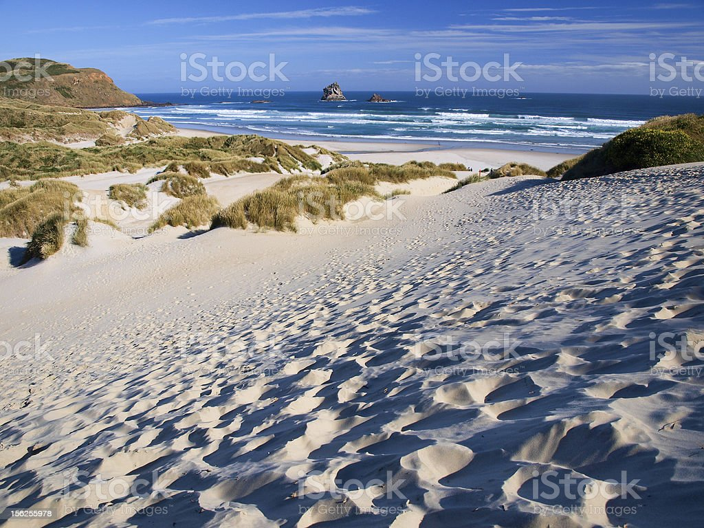 Beach and dunes royalty-free stock photo