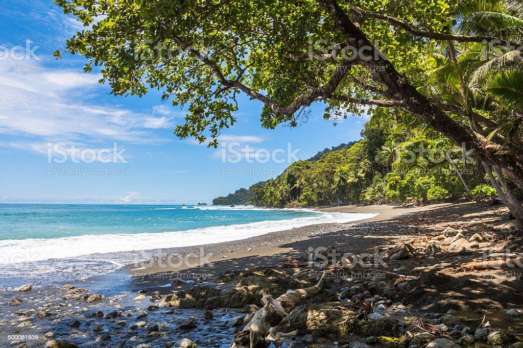 Beach and jungle in Costa Rica stock photo