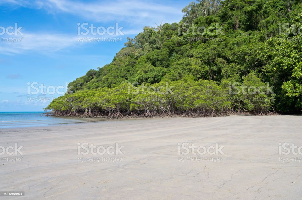 Beach and Mangrove Forest on Coral Sea stock photo
