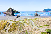 Beach and Rock Formation at Redwood National Park
