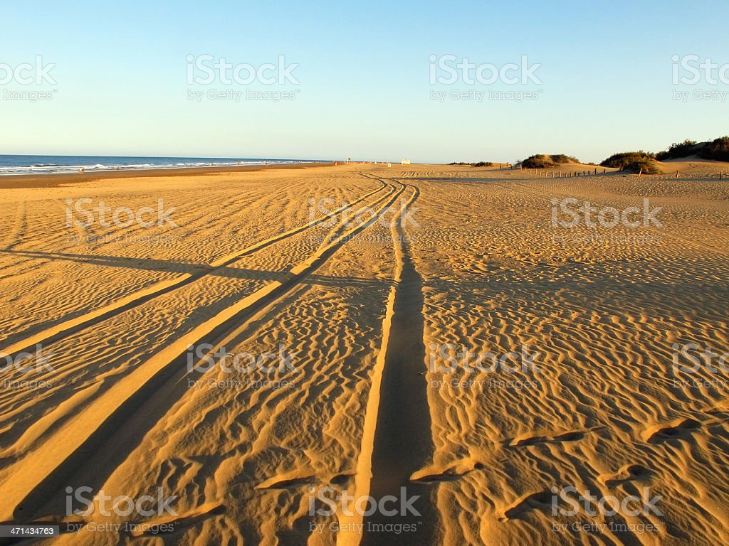 beach and Sand Dune of Maspalomas (Gran Canaria) royalty-free stock photo