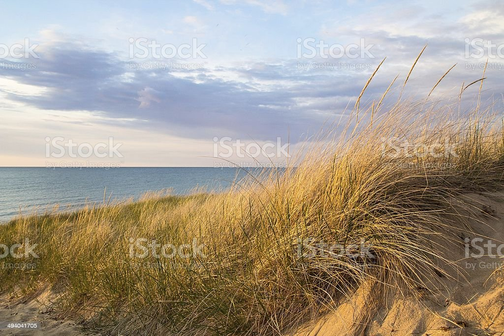 Beach and Sand Dunes stock photo